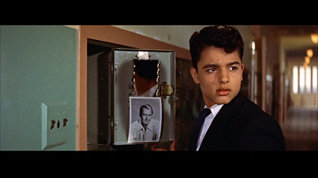 a cause essay rebel without Rebel without a cause is a 1955 american drama film about emotionally confused suburban, middle-class teenagers filmed in cinemascope directed by nicholas ray, it.